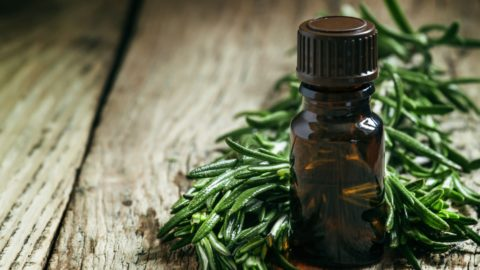 Beauty Tip Tuesday :  3 Must Know Benefits of Tree Oil